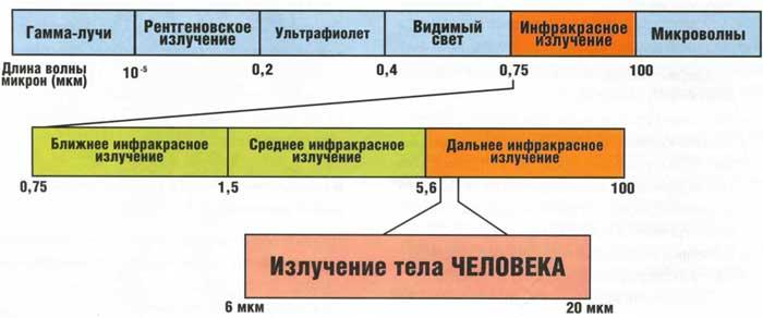 схема излучения человека лучей