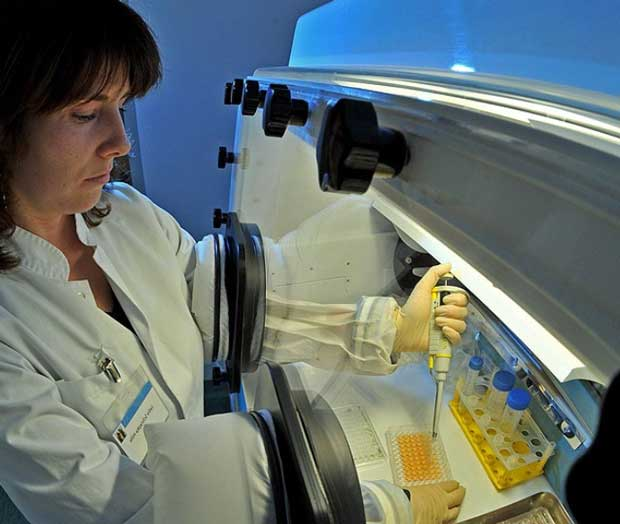 методы получения стволовых клеток