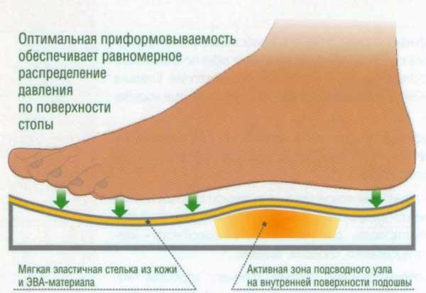 форма подошвы обуви